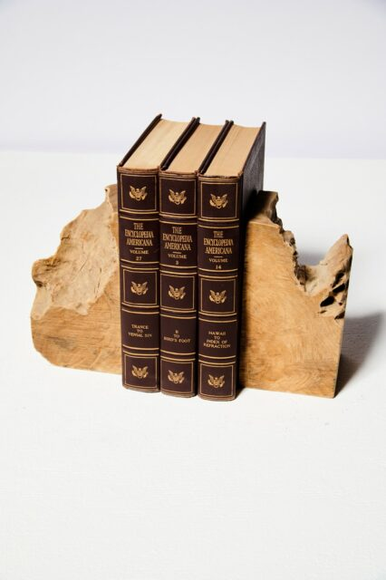 Alternate view 1 of Mastiff Live Edge Bookends