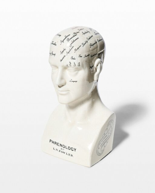 Front view of Fowler Phrenology Bust