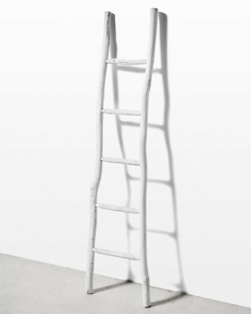 Front view of Cora 6 Foot Leaning Ladder